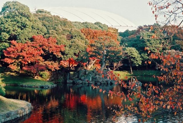 Menilik Pesona Wisata Di Tottori Jepang
