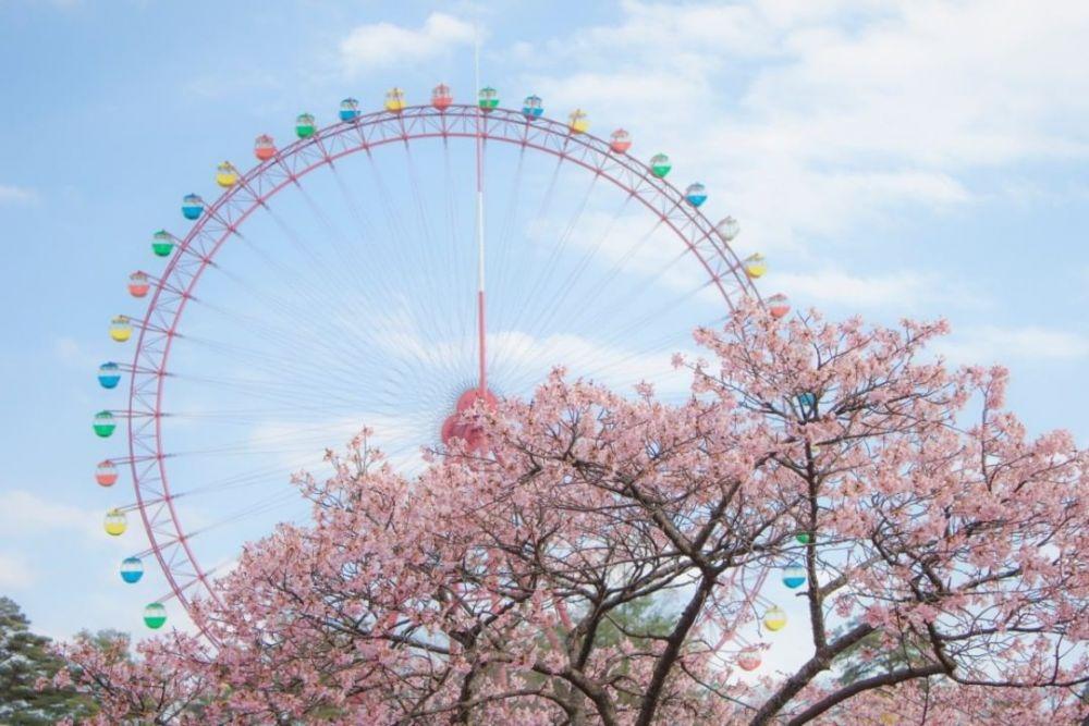 Wisata Yang Keren Abis Untuk Para Traveller Di Saitama, Jepang