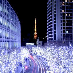 Iluminasi Musim dingin Roppongi