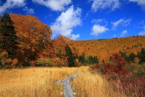 Taman Nasional Hokaido
