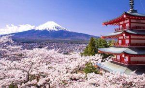 Berlibur Ke Jepang Dengan Tips Budget Hemat