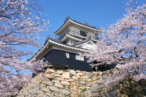 Hal Hal Yang Harus Anda Tahu Sebelum Pergi Wisata Ke Jepang
